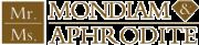有限会社ルミナス・インターナショナルのロゴ