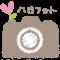 ハロフォトのロゴ