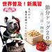 人と犬・愛犬笑顔の日普及事務局Studio hitotoinuのプレスリリース13