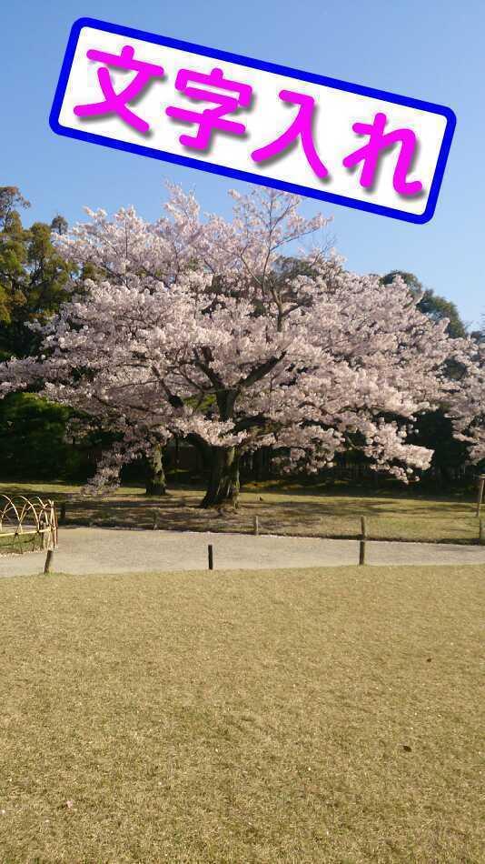 浜田 明志のプレスリリース画像1