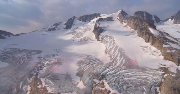 モデーア I/D™ アドバンス スキンケアシステム 新発売~「摂氏0℃」でも生き抜く力をもった『氷雪藻(ひょうせつそう)』の成分を化粧品技術に応用~