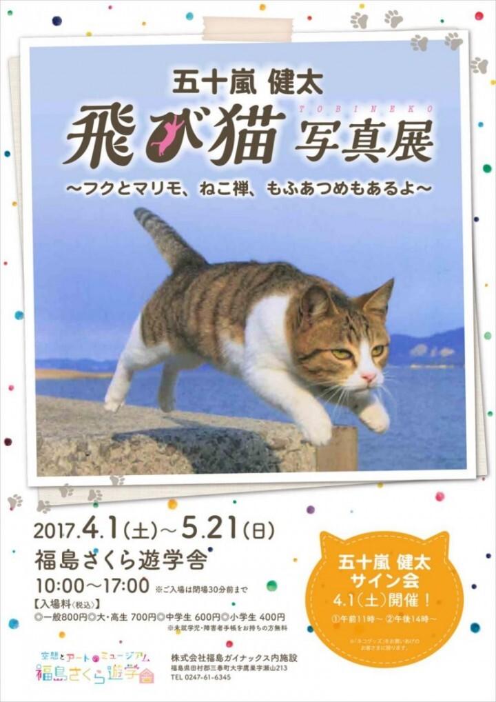 大ヒットねこ写真集『飛び猫』『フクとマリモ』のカメラマン五十嵐健太の全国巡回写真展が開催!