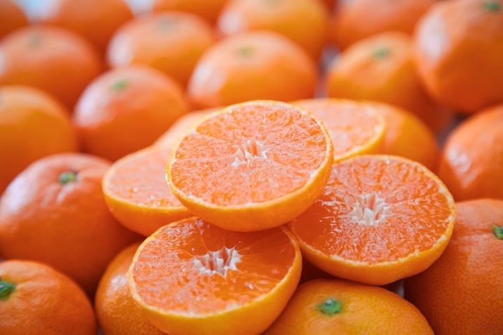 農業生産法人 株式会社ミヤモトオレンジガーデンのプレスリリース画像2