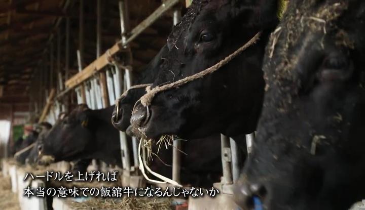 福島県のプレスリリース画像6