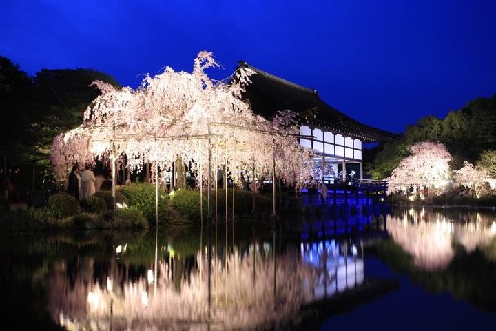 株式会社京都新聞COMのプレスリリース画像10