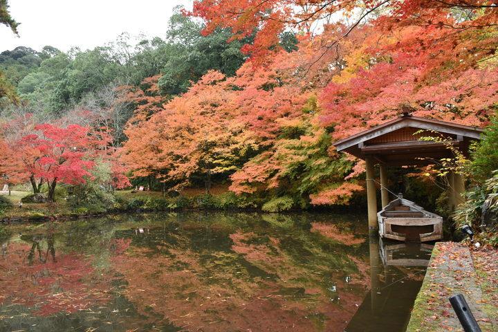 海の京都DMOのプレスリリース画像6