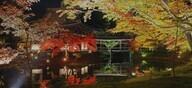 京都フラワーツーリズムのプレスリリース15