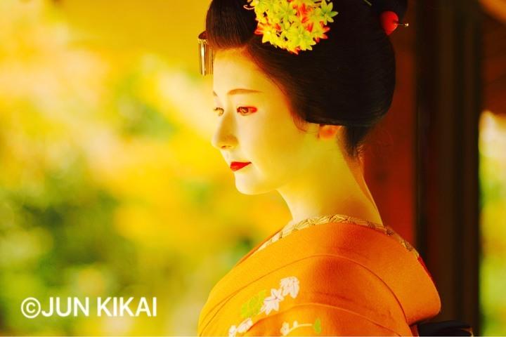 京都フラワーツーリズムのプレスリリース画像6