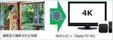 京都フラワーツーリズムのプレスリリース5