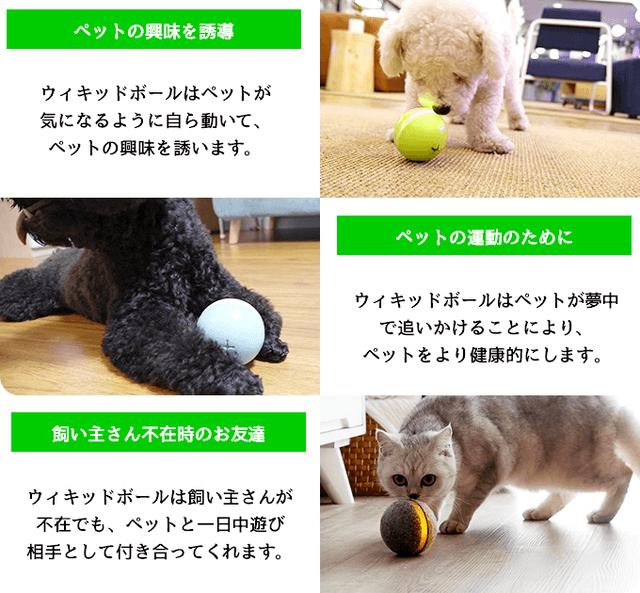 株式会社コズミックコミュニケーションズのプレスリリース画像5