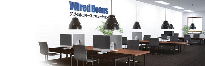 株式会社ワイヤードビーンズのプレスリリース画像2