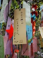 新日本カレンダー株式会社のプレスリリース7