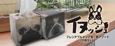 大昭和紙工産業株式会社のプレスリリース10