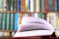 学校法人八洲学園 八洲学園大学のプレスリリース9