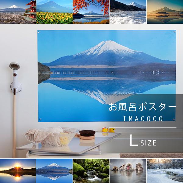 バスリエ株式会社のプレスリリース画像7