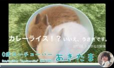 秋田 潤のプレスリリース