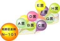 株式会社B・Jコーポレーションのプレスリリース15