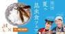 株式会社 亜細亜TokyoWorldのプレスリリース4