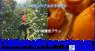 fao agrocommunicationのプレスリリース6
